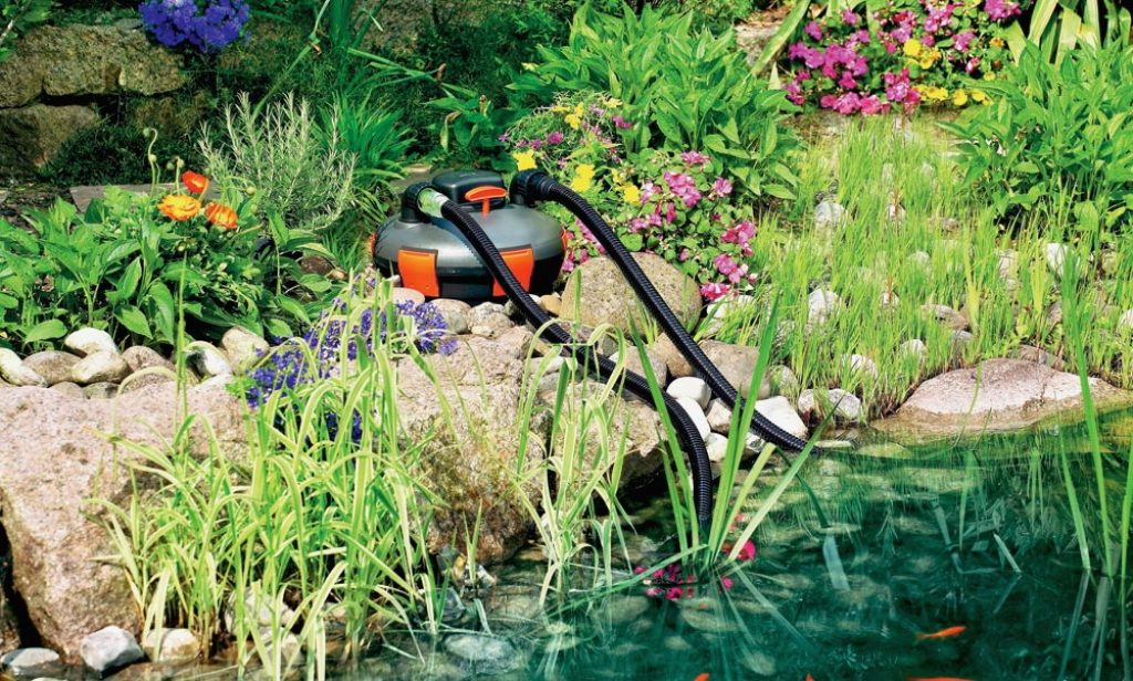 9 Best Pond Filters - Clean and Balanced Pond Environment!