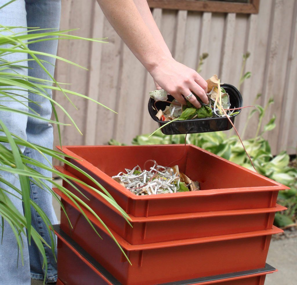 6 Best Worm Composters - Create Your Own Worm Farm!