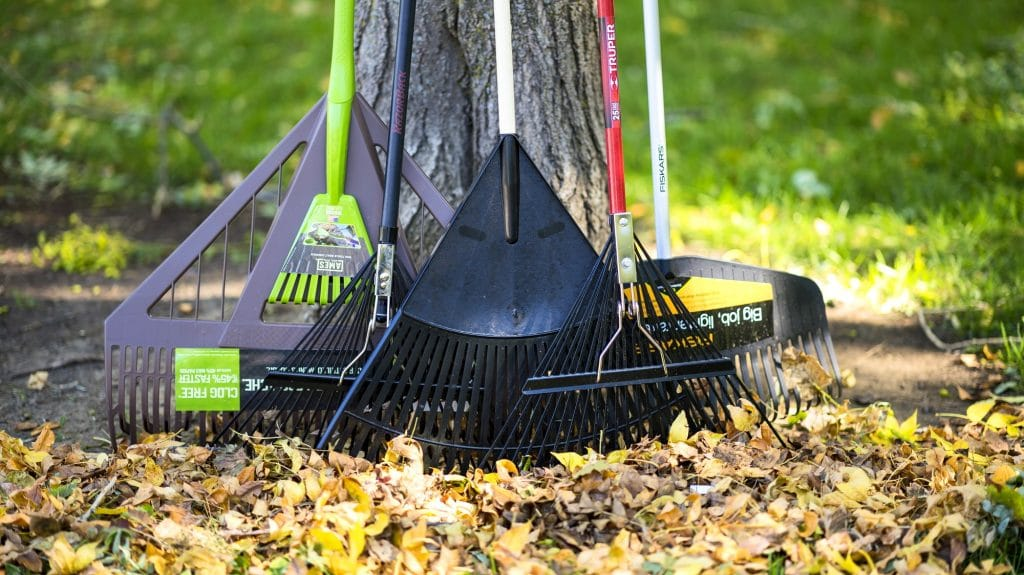 10 Fantastic Leaf Rakes – Keep Your Yard or Garden in Perfect Condition!