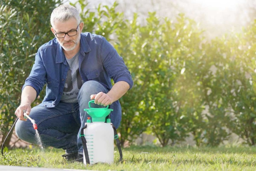 8 Excellent Weed Killers for Perfect Lawn and Yard