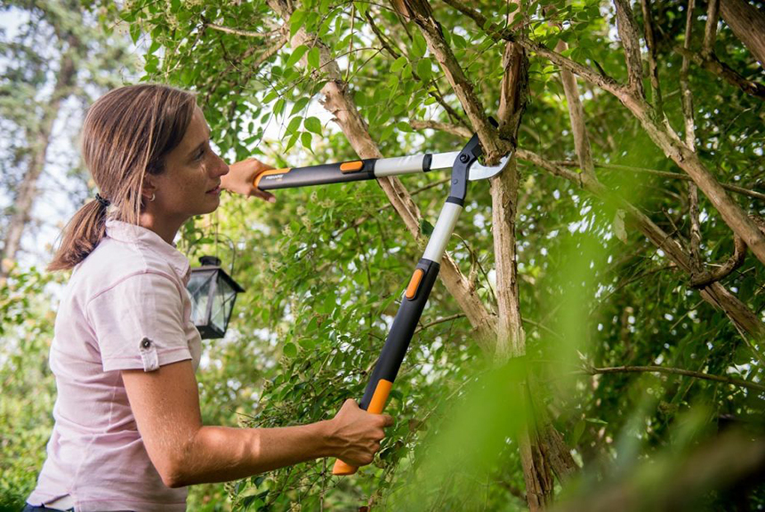 10 Most Powerful Loppers - Remove any Branches Effortlessly!