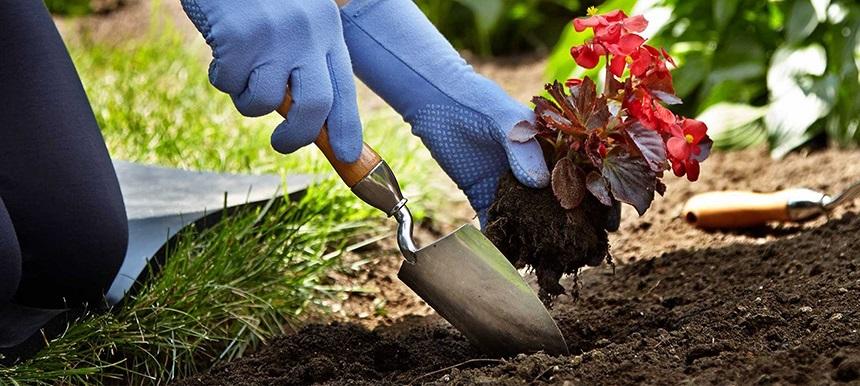 8 Best Garden Trowels - Gardening for Everyone