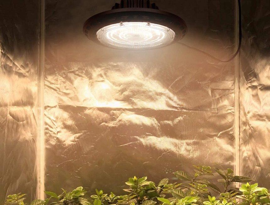 10 Best UFO LED Grow Lights – Make Your Own Indoor Garden!