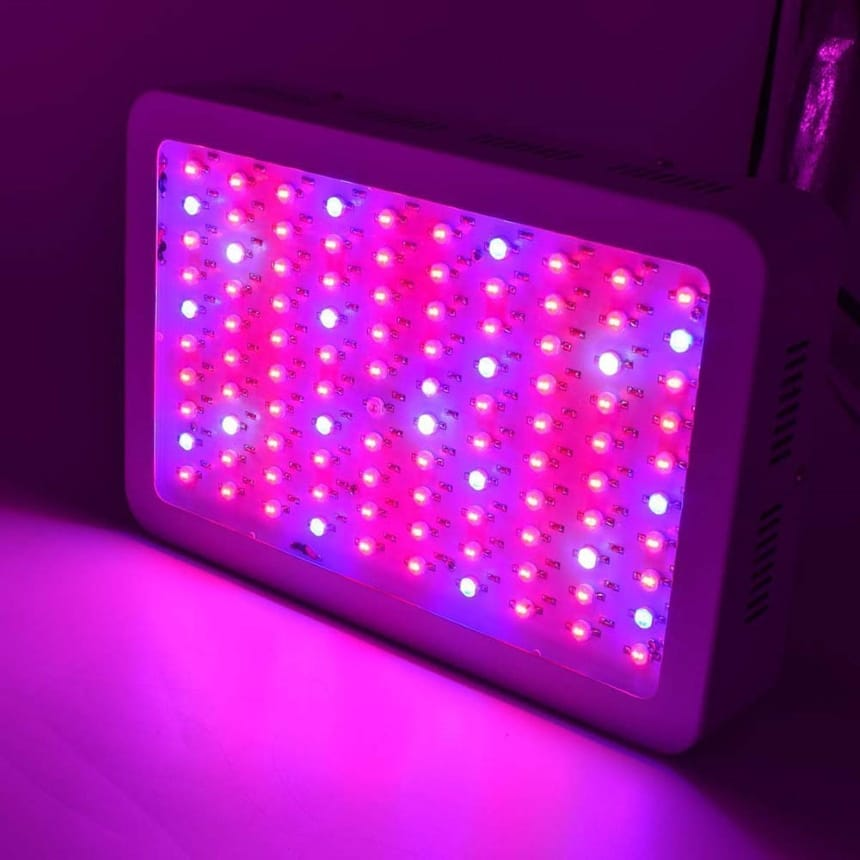 8 Best 1000-Watt LED Grow Lights to Maximize Growth Rate