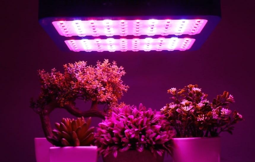 8 Best Full Spectrum LED Grow Lights for All Stages of Growth