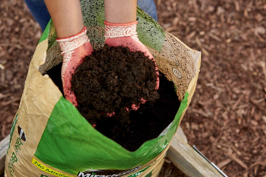5 Best Soils for Raised Beds - Aid For Your Garden