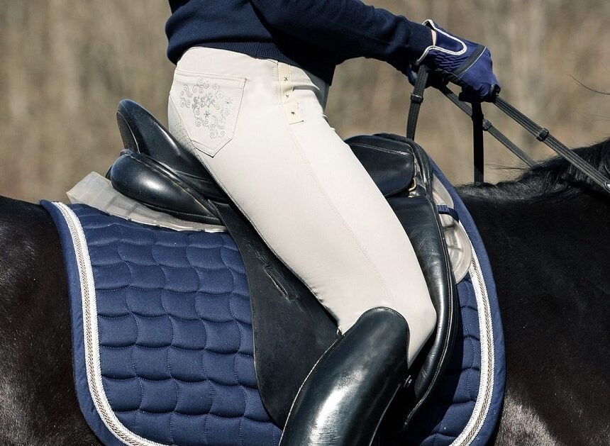 5 Best Dressage Saddles for Enhanced Comfort and Optimal Riding Performance