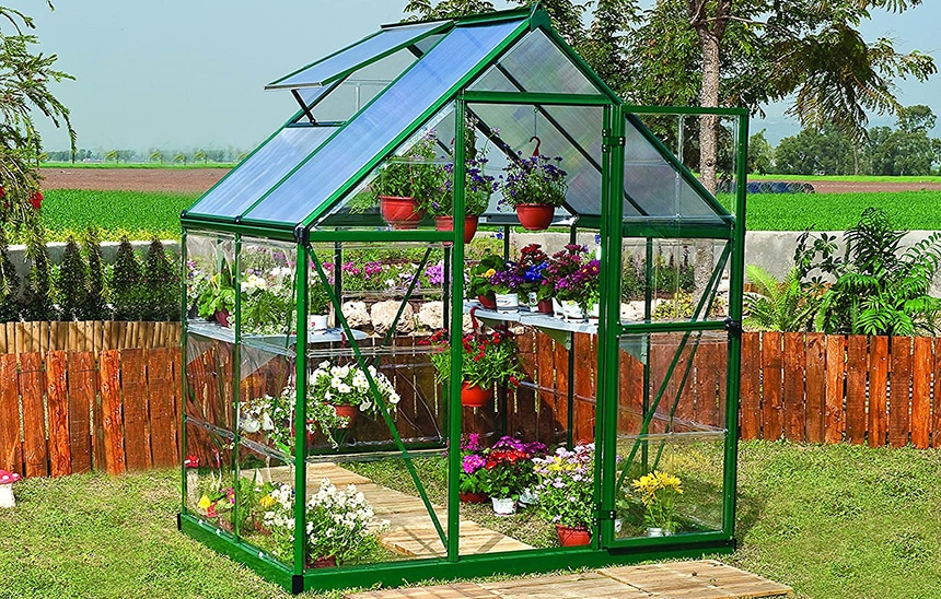 12 Best Small Greenhouses - All That Your Plants Need!