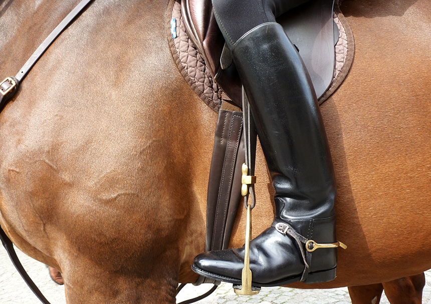 5 Best Spurs for Beginners - Control Without Hurt