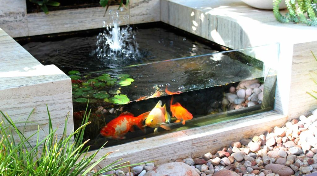 6 Best Pond Fountains - Aesthetics With More Features To It