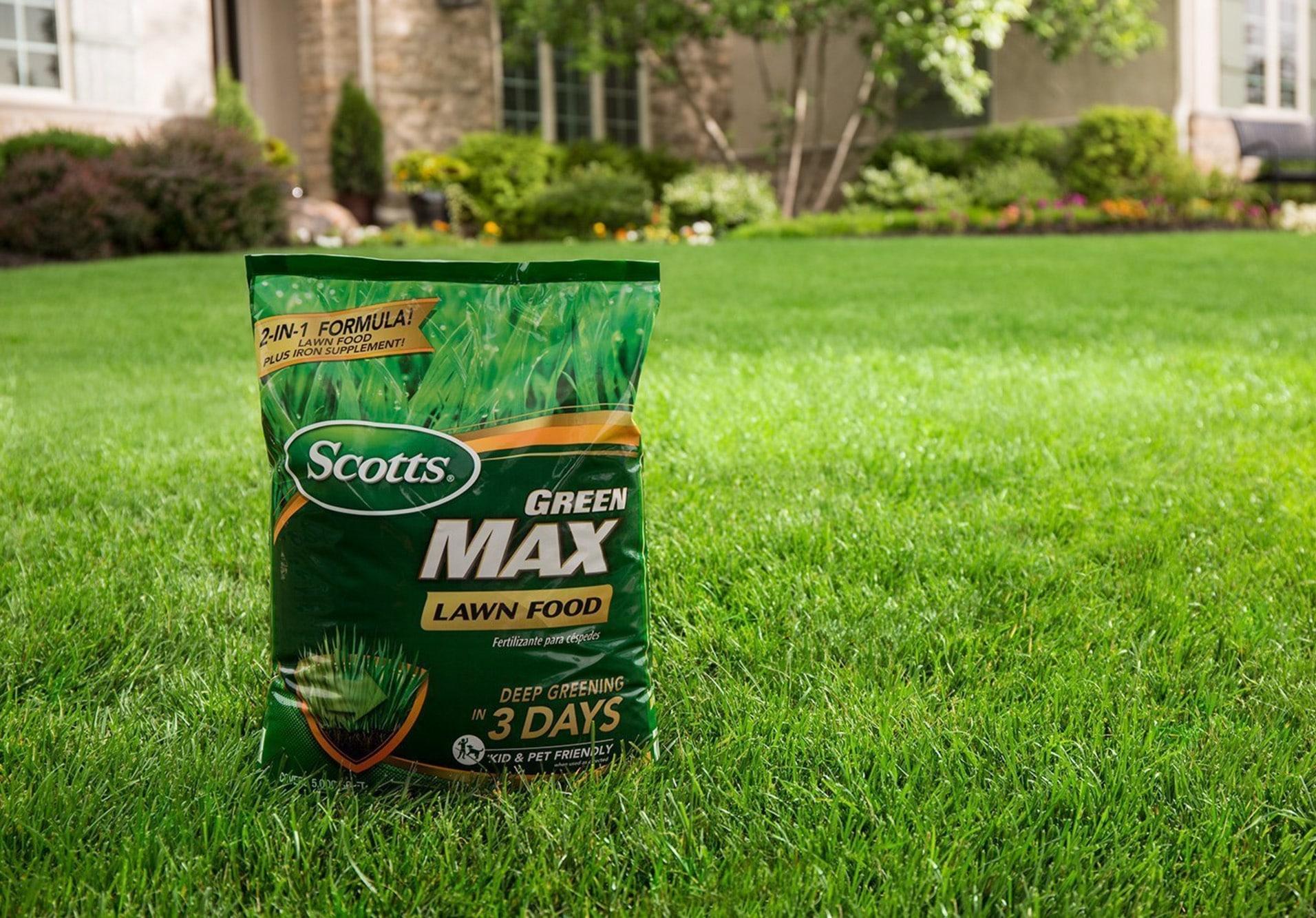 Best Lawn Fertilizers Reviewed in Detail
