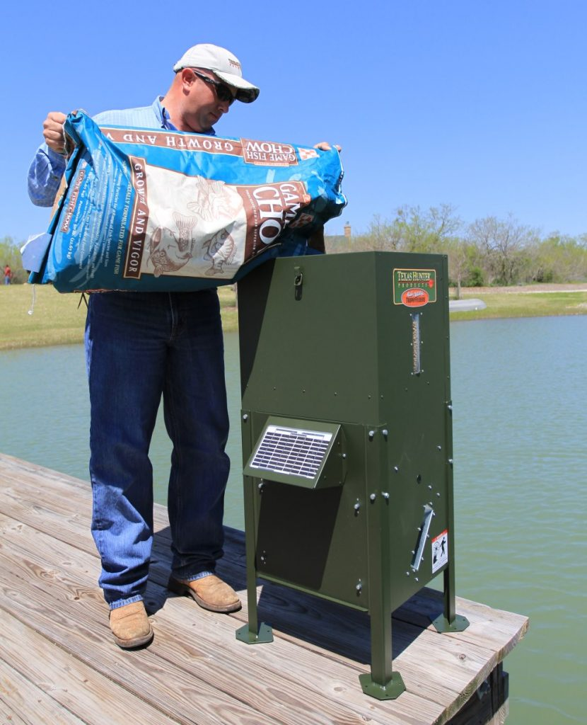6 Best Pond Fish Feeders - Keep Your Fish Well-Fed and Happy!
