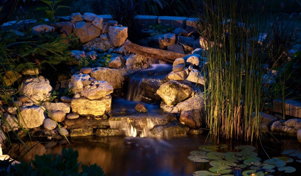 10 Best Pond Lights - Bring Your Water Feature to Life at Night!