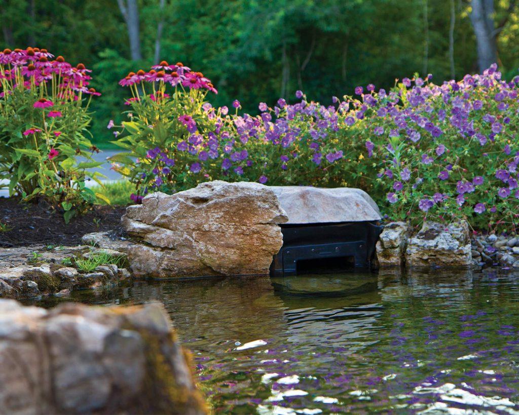 5 Best Pond Skimmers - When Your Pond Needs Help