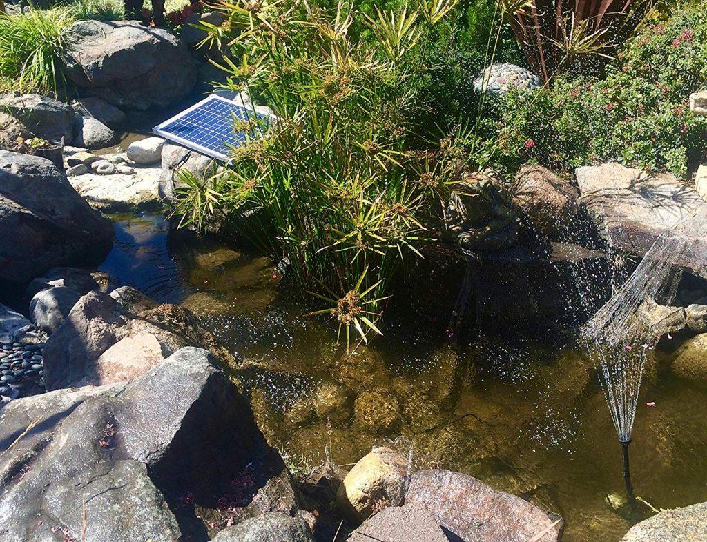 5 Best Solar Pond Pumps - Don't Spend Extra!