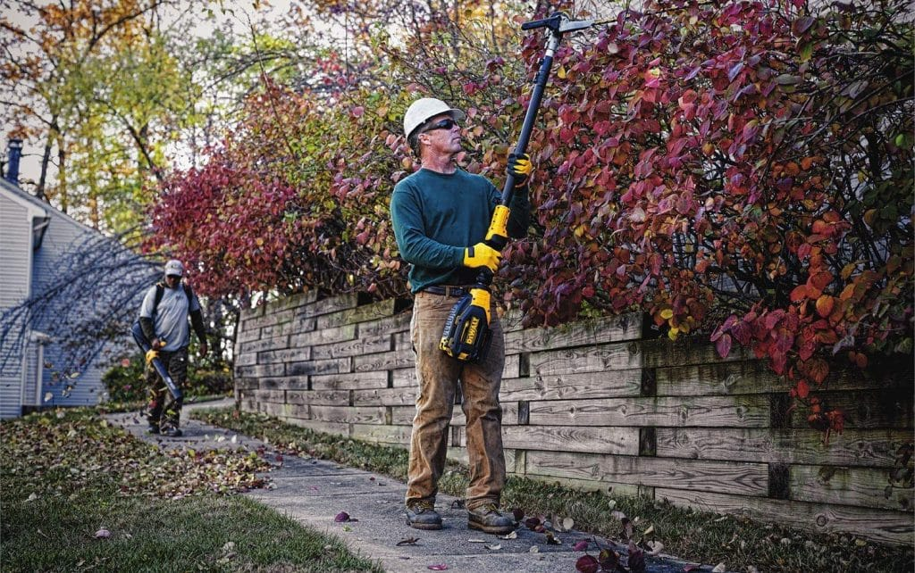 7 Best Pole Hedge Trimmers - Height Isn't An Issue Any Longer