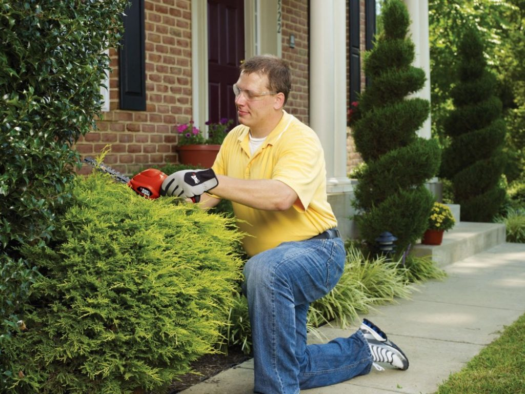 5 Best Small Hedge Trimmers - Easy and Fast Trimming