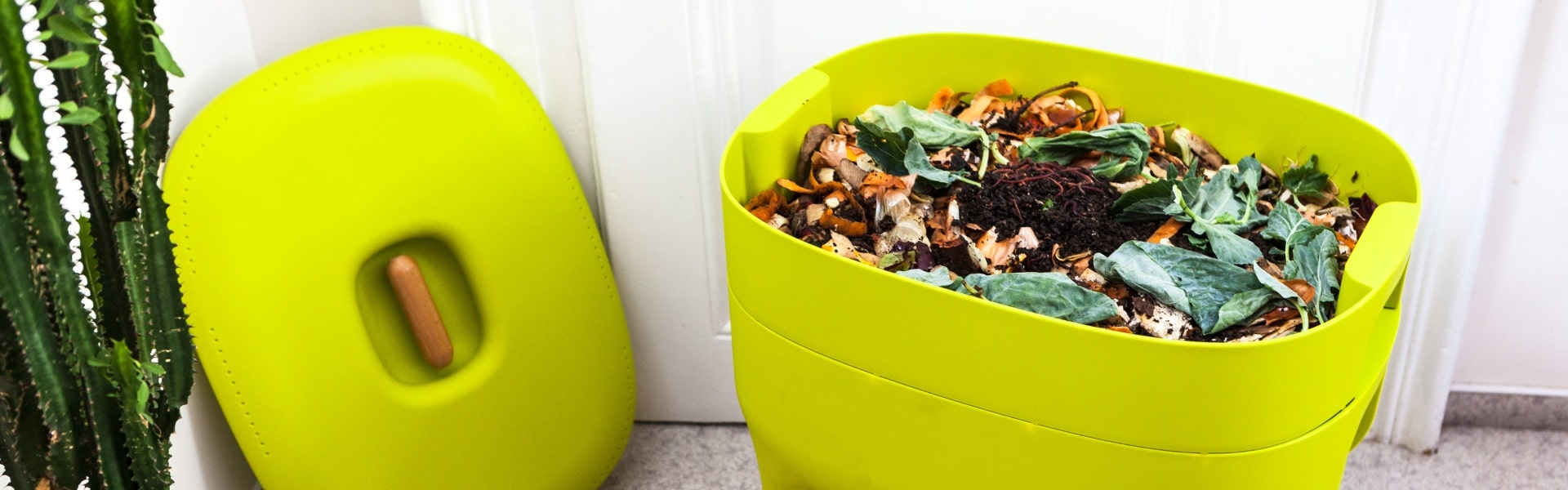Best Worm Composters Reviewed in Detail