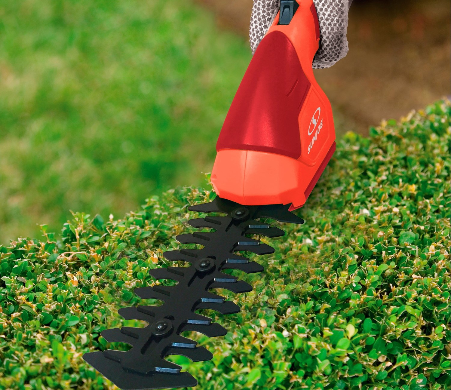 5 Best Lightweight Hedge Trimmers - Take Care of Your Garden With Ease