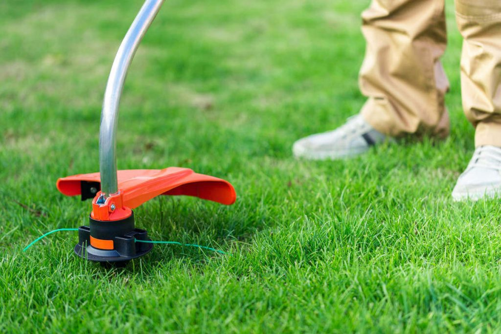 10 Best Weed Eaters - Make Your Yard Lawn Look Perfect!