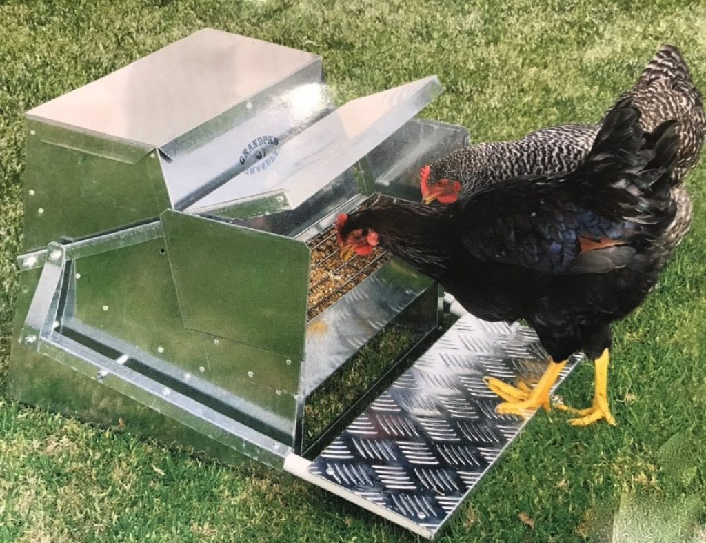 6 Best Chicken Feeders - Secure And Healthy Feeding for Your Flock