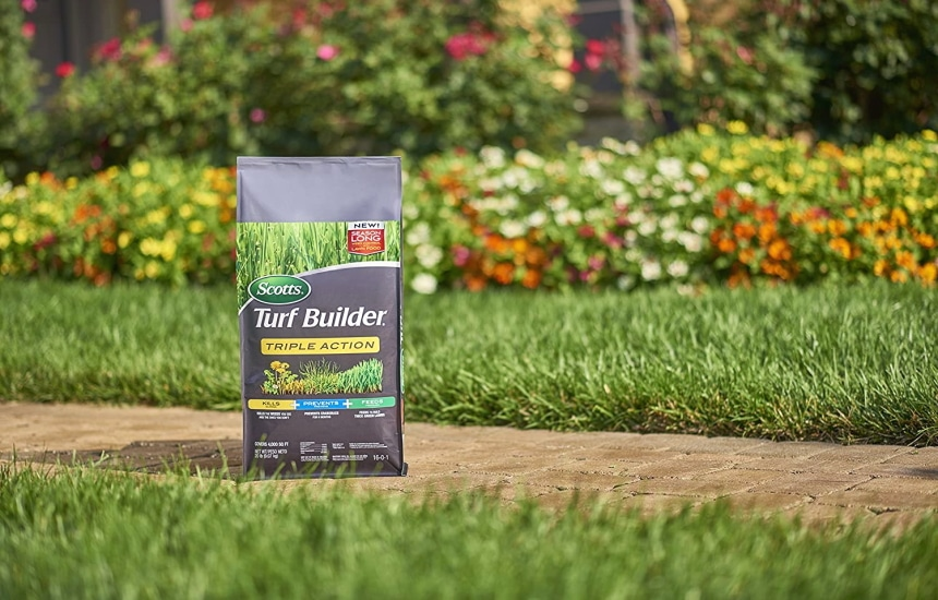 8 Best Dandelion Killers - Weeds are Taken Care of!