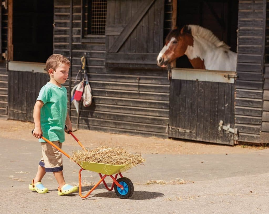 10 Best Kids Wheelbarrows - Perfect for Kids Playing in a Garden!