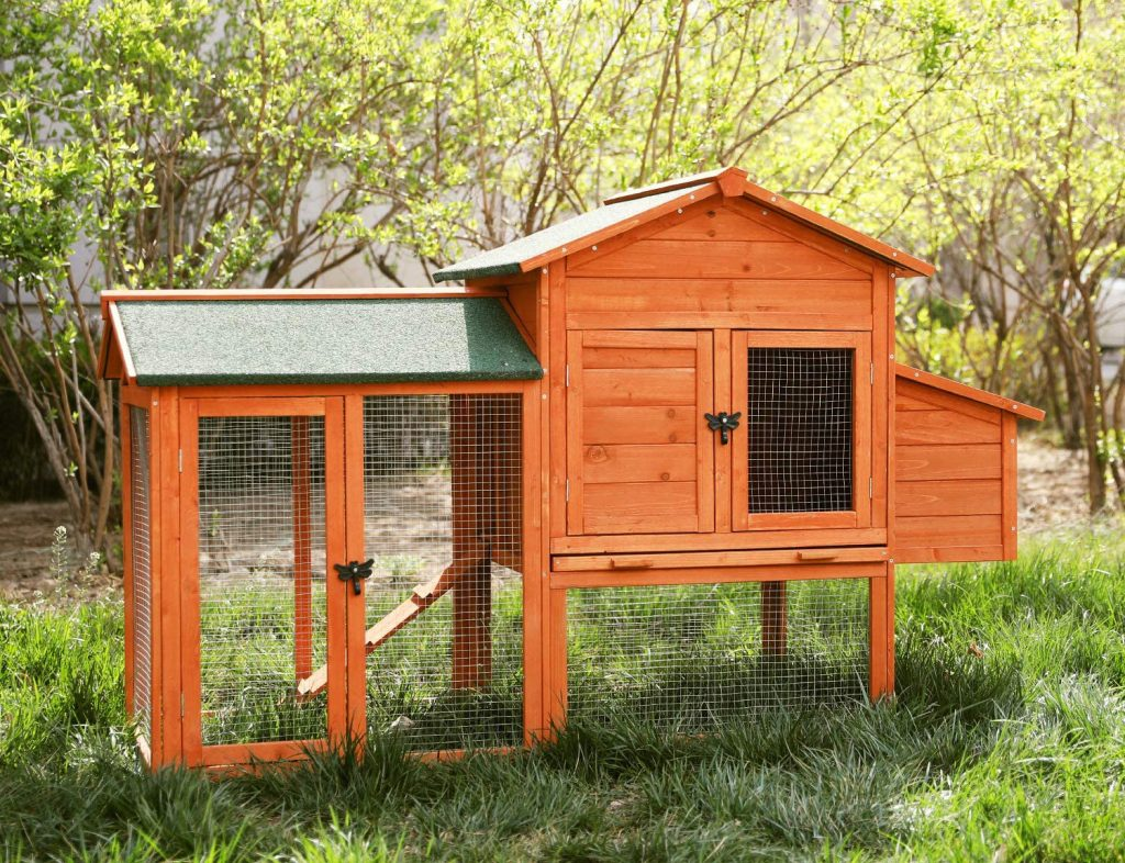 8 Best Chicken Coops - The Housing of Your Chickens' Dreams