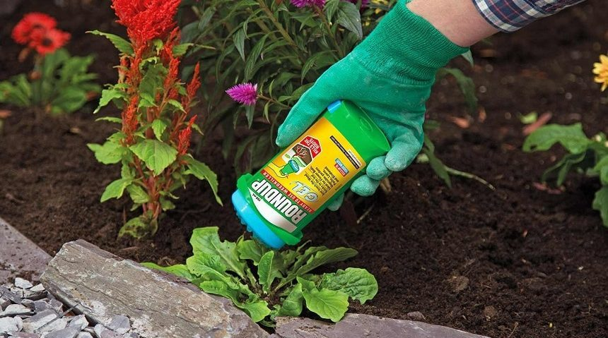 10 Best Weed Killers for Flower Beds - Make Your Garden Look Beautiful!