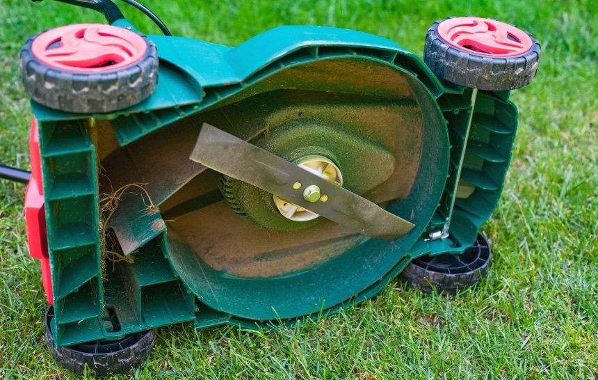 10 Best Lawn Mowers for Small Yards – Excellent Tools for Quick Tasks!