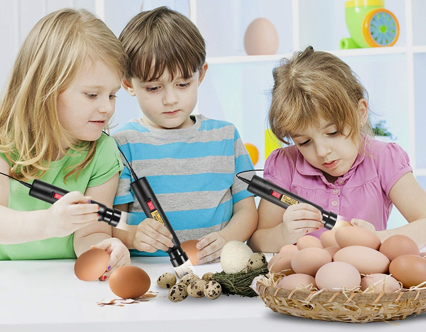 5 Best Egg Candlers - Hatching Under Control