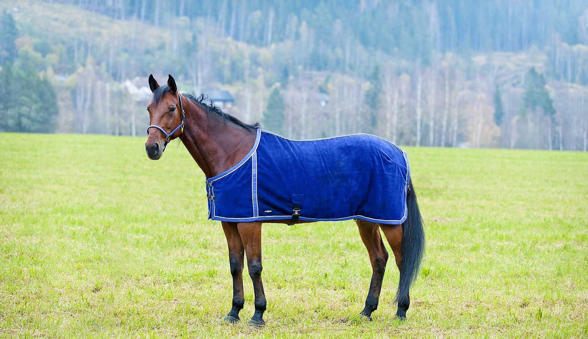 78, Orange TGW RIDING Comfitec Essential Standard Neck Lite Horse Turnout Sheet 1200D Waterproof and Breathable Horse Rain Sheet