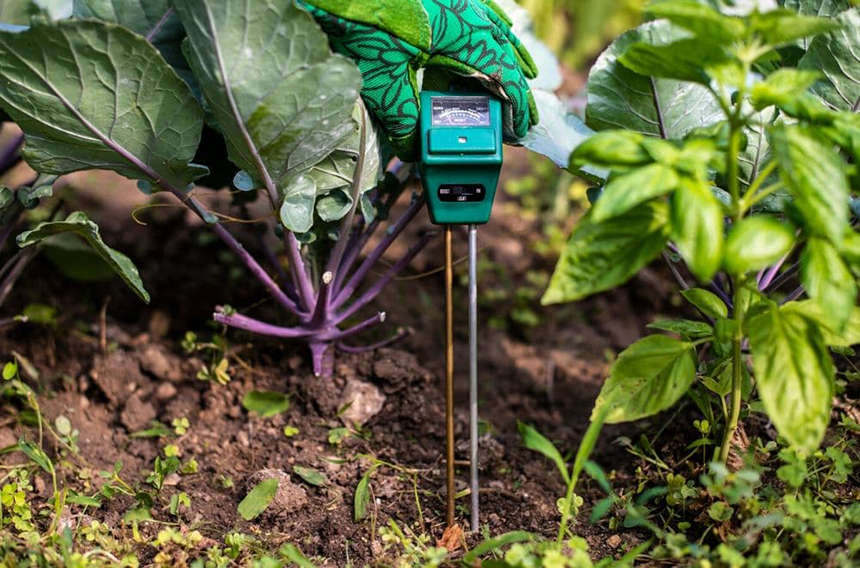 10 Best Soil Test Kits – Achieve the Balance of Nutrients!