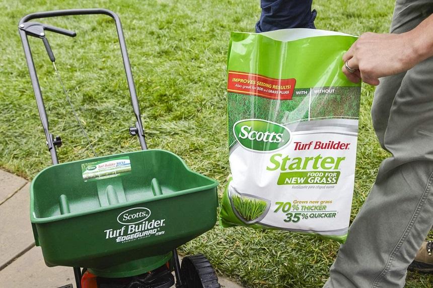 5 Best Fertilizers for Zoysia Grass - Boost Your Garden!