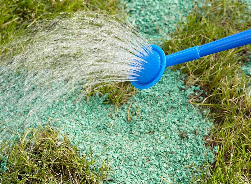Causes of Burnt Grass and How to Fix It