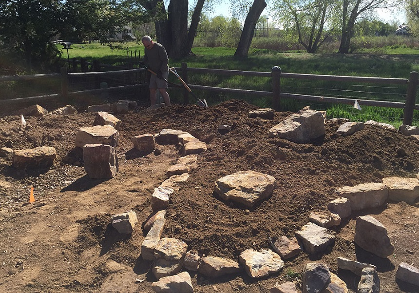 How to Make a Rock Garden in Five Steps and Some Quick Design Ideas