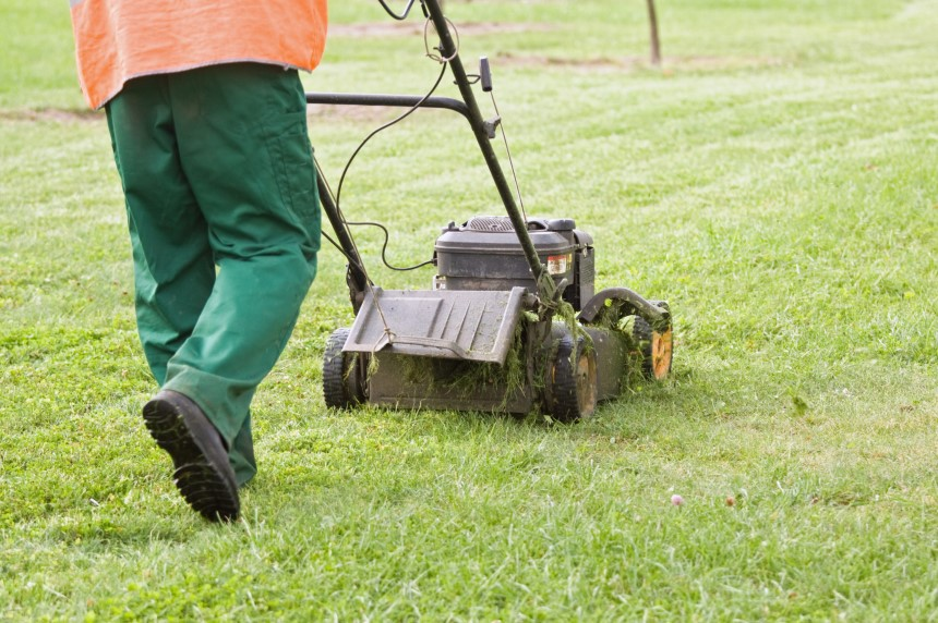 Lawn Mower Mulching vs Side Discharge: Which is Better?