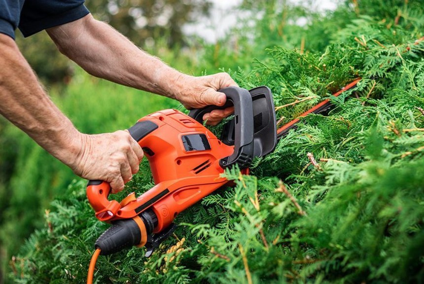 Gas vs Electric Hedge Trimmer: Which Does the Job Better?