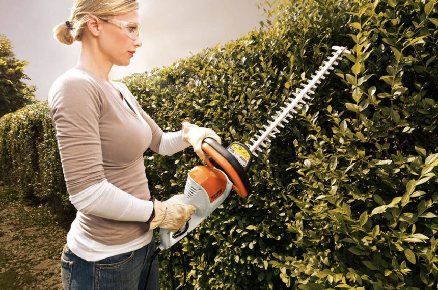 Hedge Trimmer vs Chainsaw: Which Will Be Better for Your Yard?
