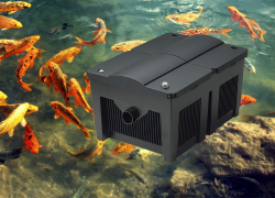 5 Best Koi Pond Filters – Healthy Environment for Your Fish